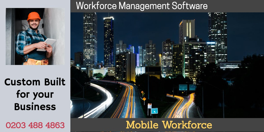 Business Software w1